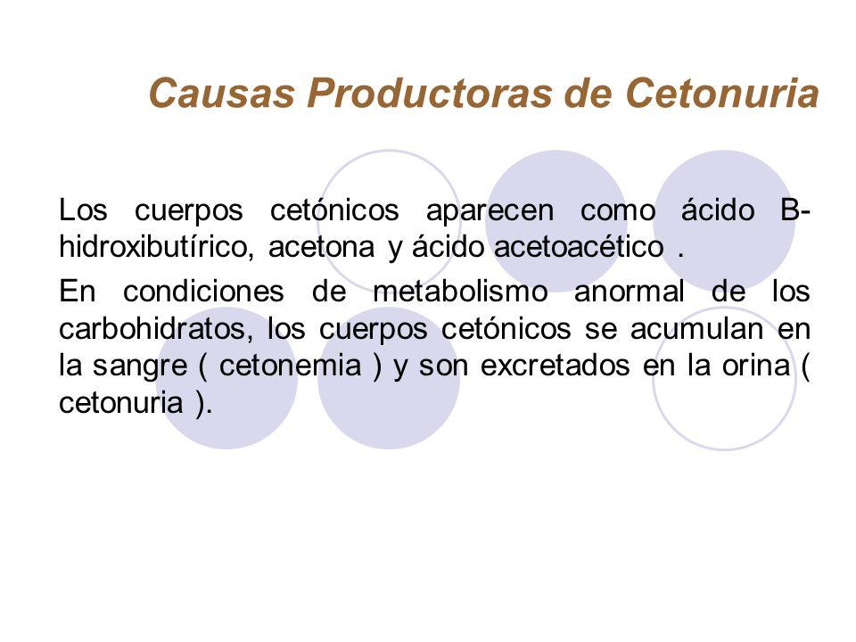 Causas Productoras de Cetonuria
