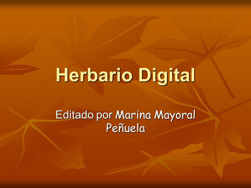 Editado por Marina Mayoral Peñuela