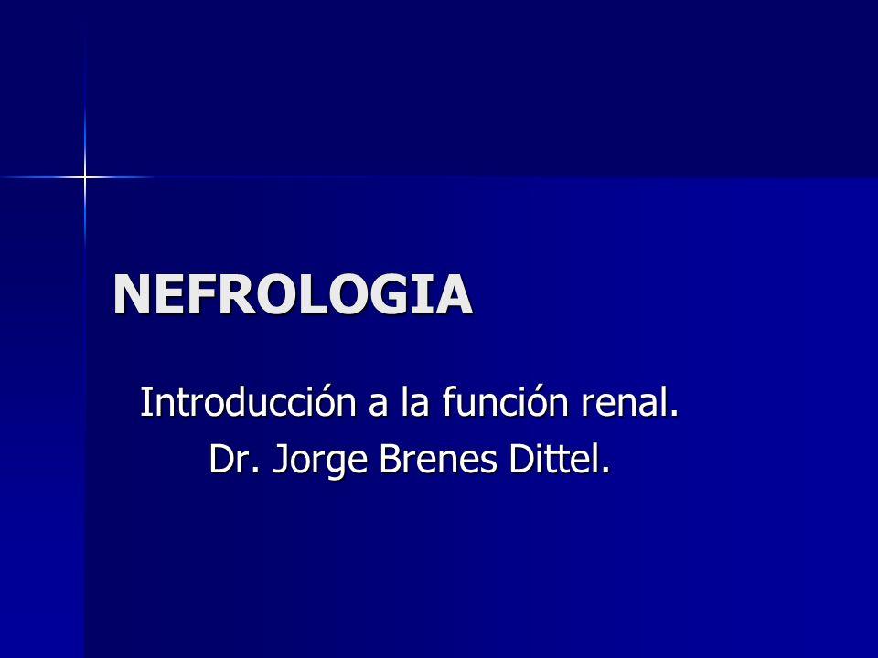Introducción a la función renal. Dr. Jorge Brenes Dittel.