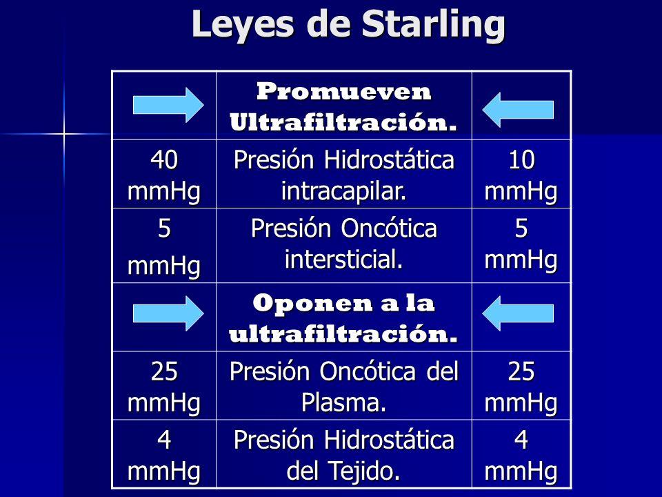 Leyes de Starling Promueven Ultrafiltración. 40 mmHg