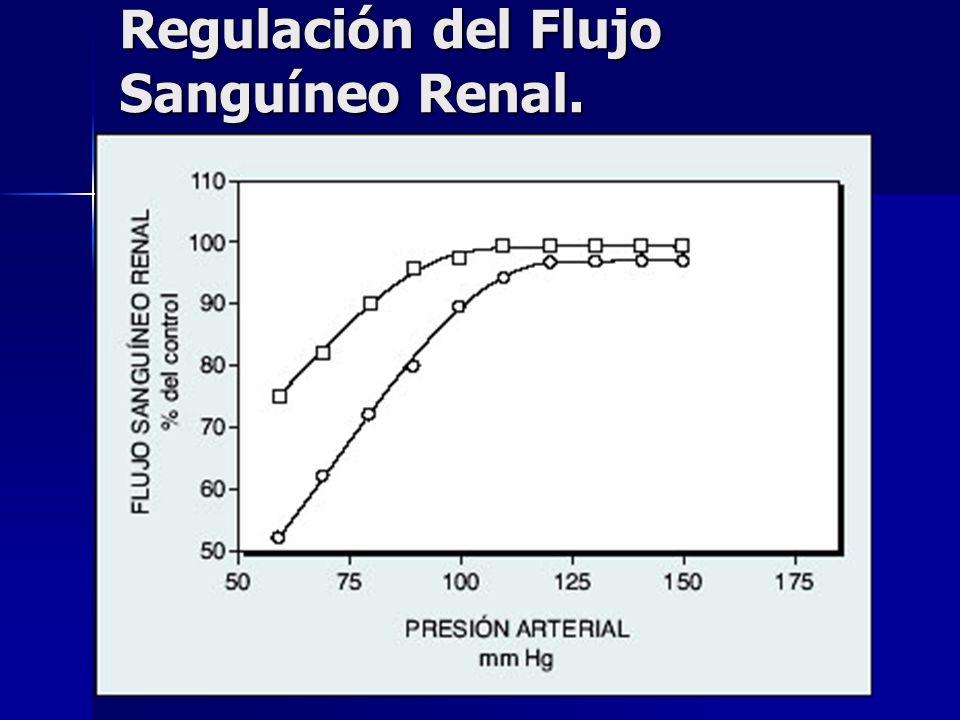 Regulación del Flujo Sanguíneo Renal.