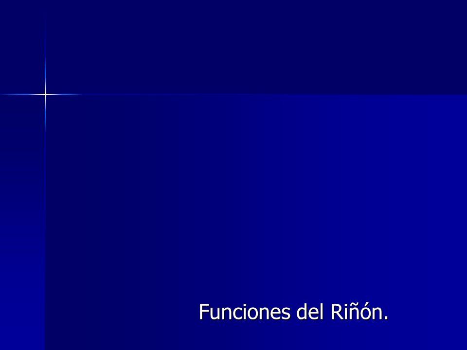 Funciones del Riñón.