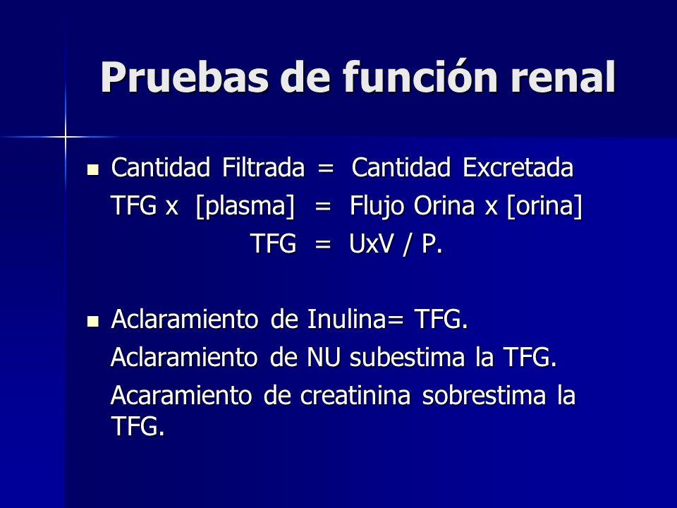 Pruebas de función renal