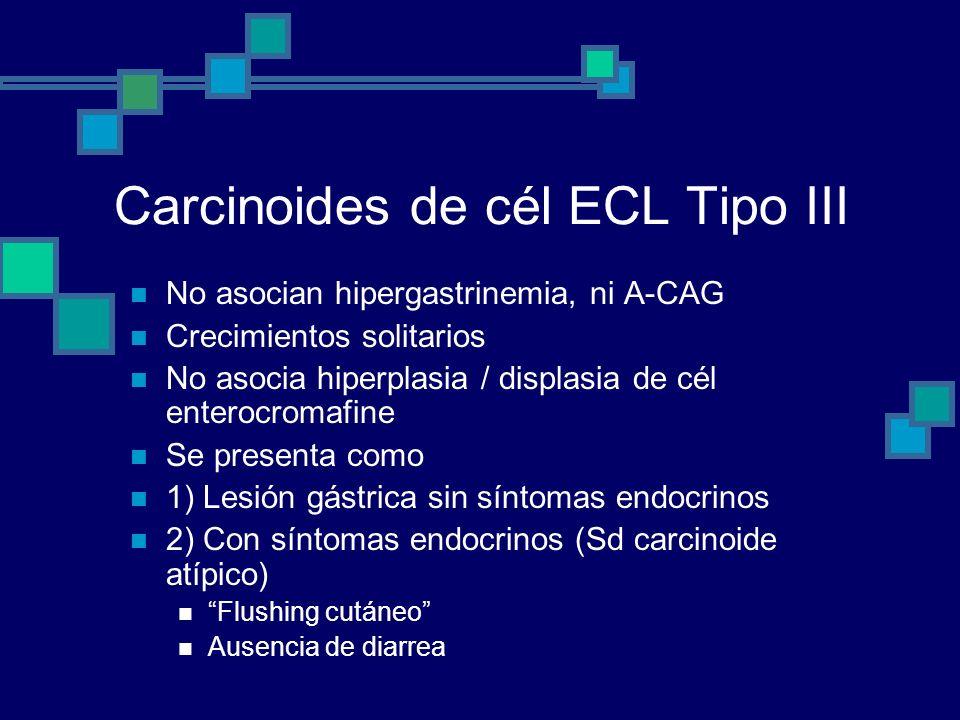 Carcinoides de cél ECL Tipo III