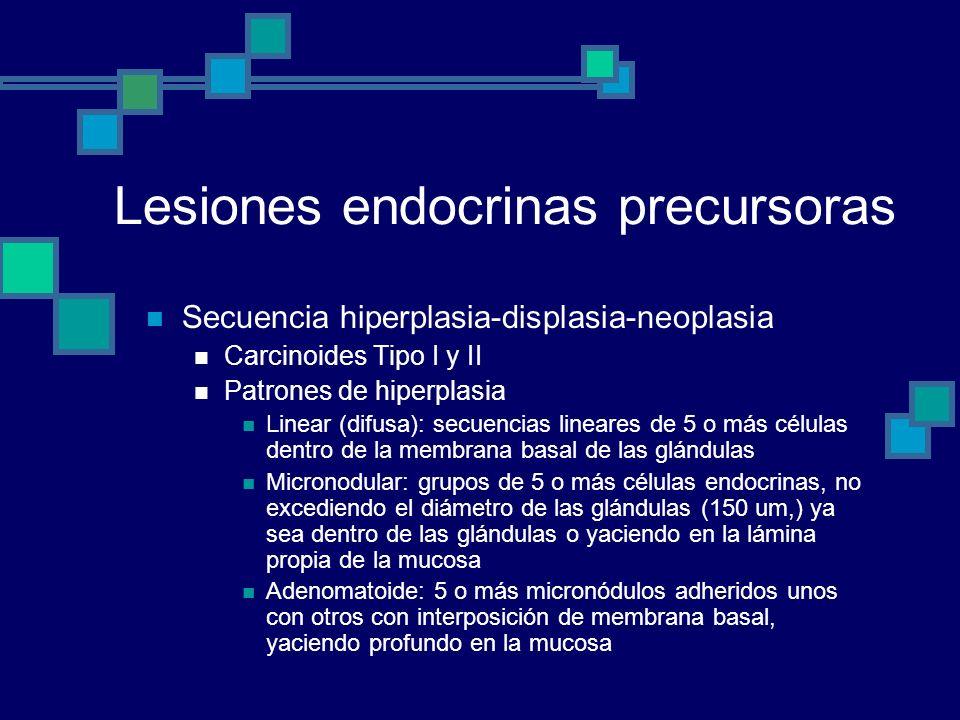Lesiones endocrinas precursoras