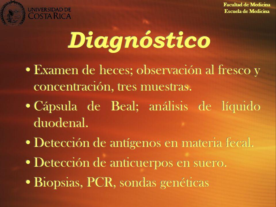 Facultad de Medicina Escuela de Medicina. Diagnóstico. Examen de heces; observación al fresco y concentración, tres muestras.