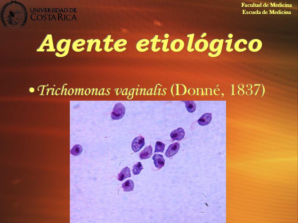 Agente etiológico Trichomonas vaginalis (Donné, 1837)