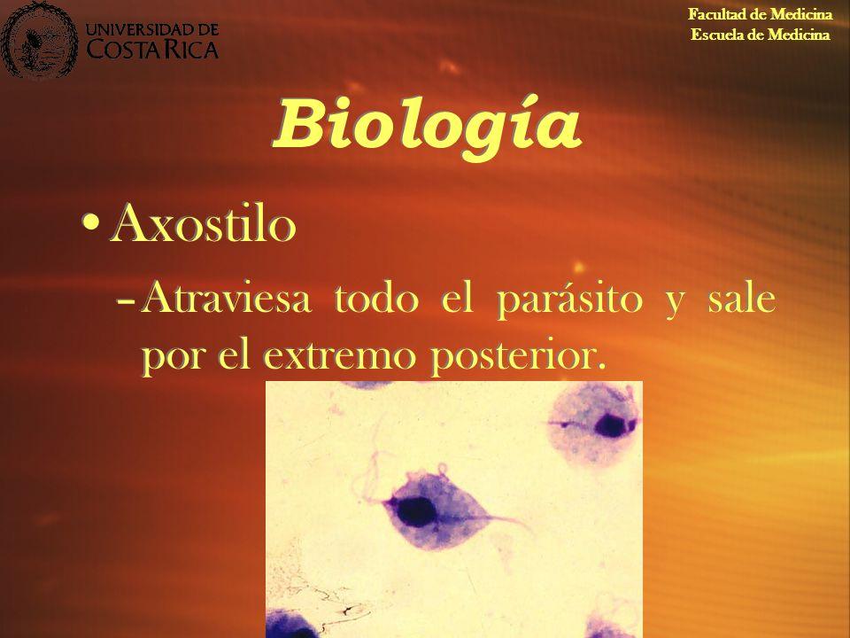 Facultad de Medicina Escuela de Medicina. Biología.