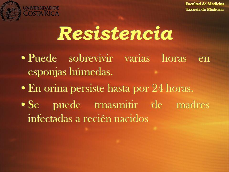 Resistencia Puede sobrevivir varias horas en esponjas húmedas.