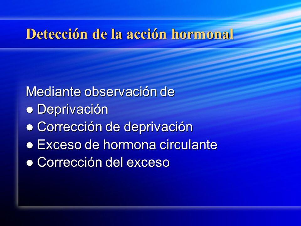 Detección de la acción hormonal