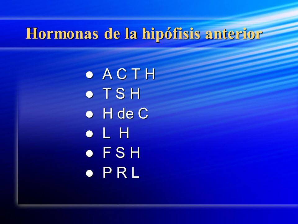 Hormonas de la hipófisis anterior
