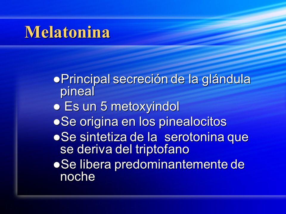 Melatonina Principal secreción de la glándula pineal
