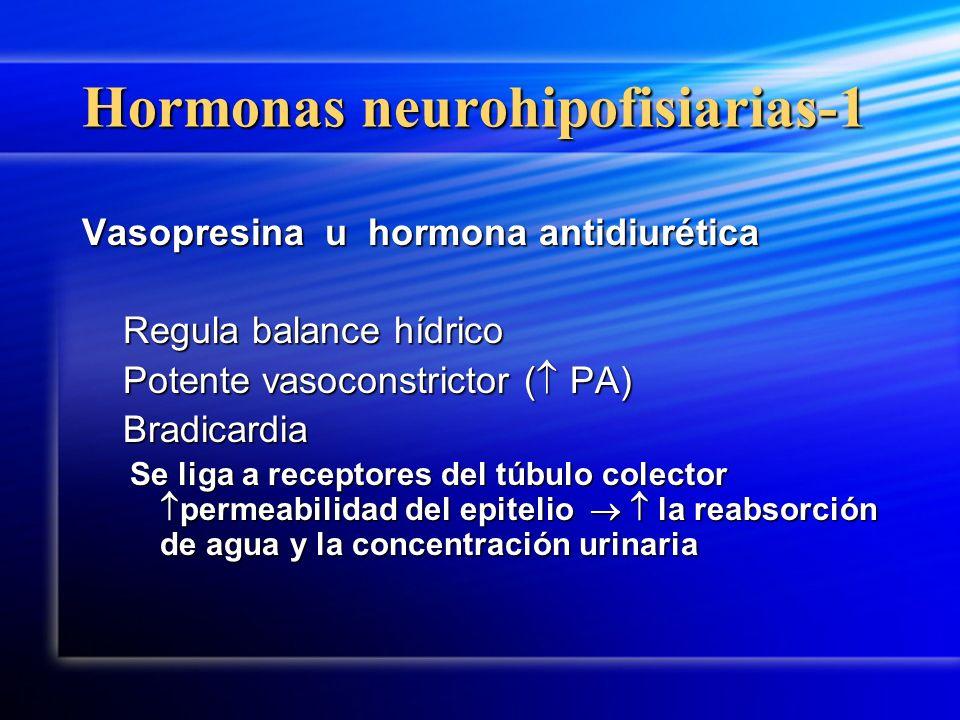 Hormonas neurohipofisiarias-1