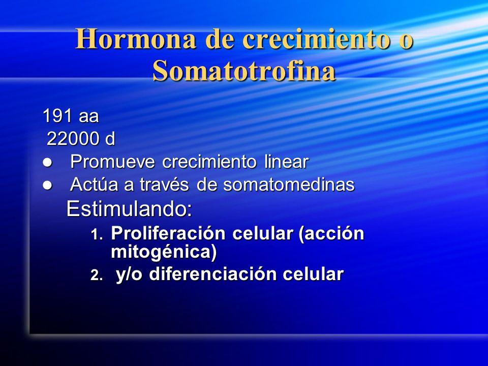 Hormona de crecimiento o Somatotrofina