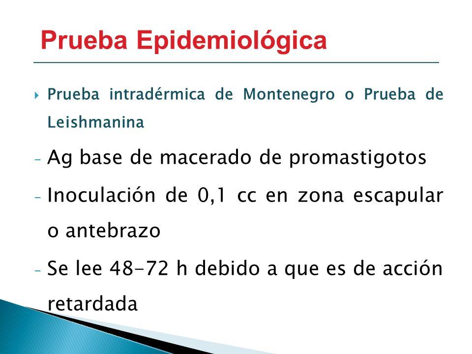 Prueba Epidemiológica