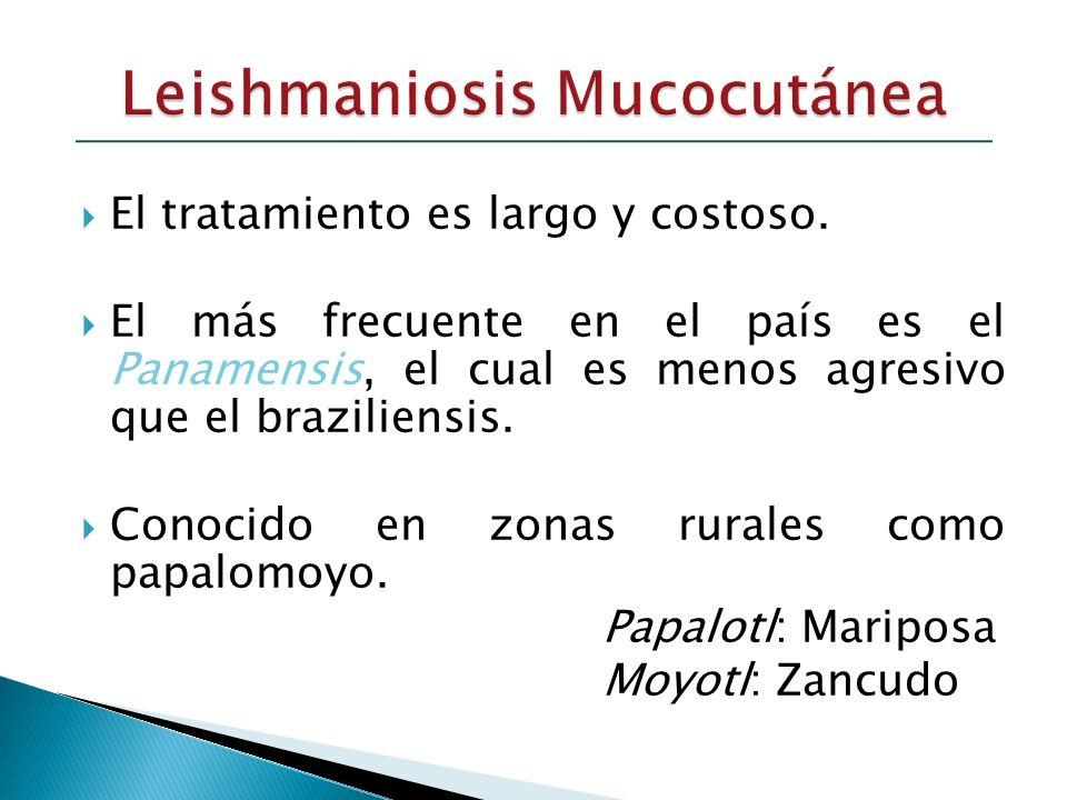 Leishmaniosis Mucocutánea