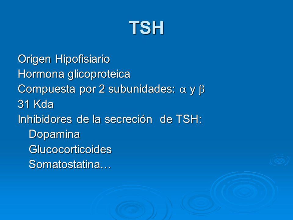 TSH Origen Hipofisiario Hormona glicoproteica