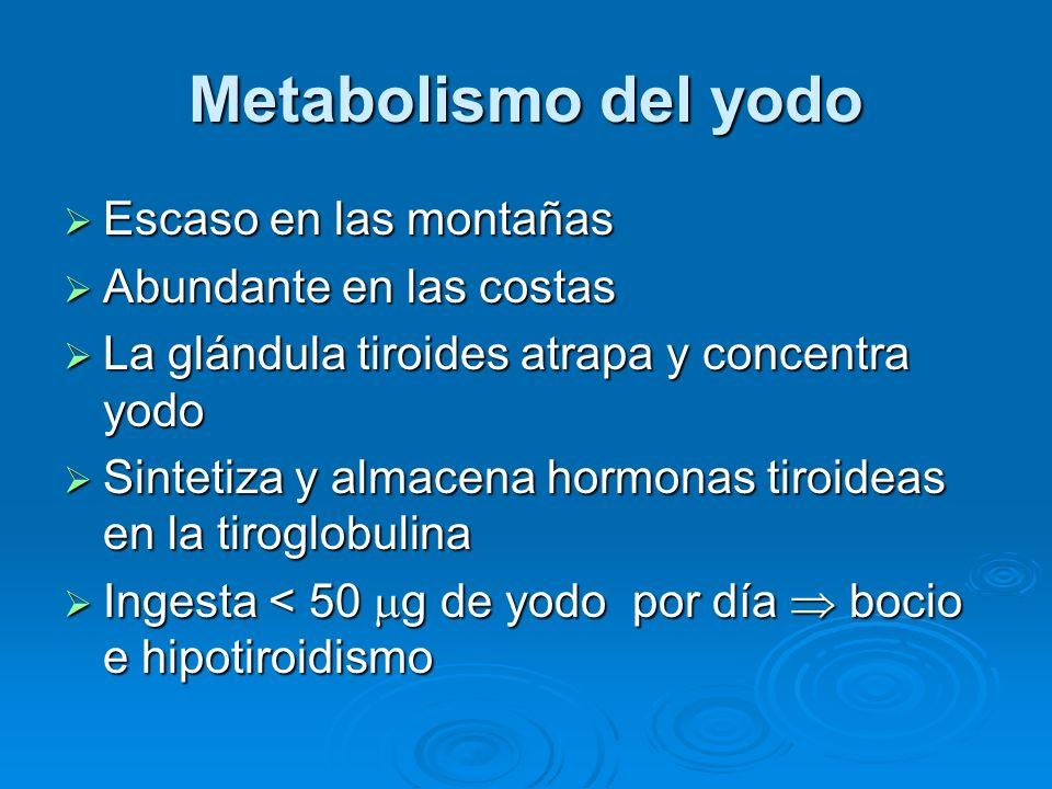 Metabolismo del yodo Escaso en las montañas Abundante en las costas