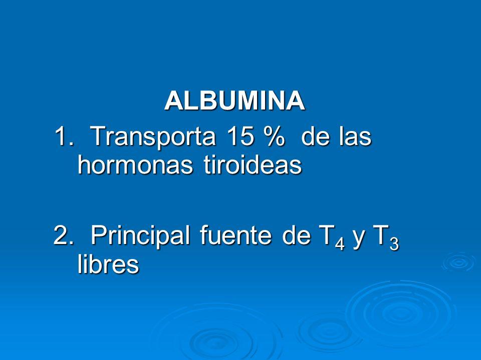ALBUMINA 1. Transporta 15 % de las hormonas tiroideas.