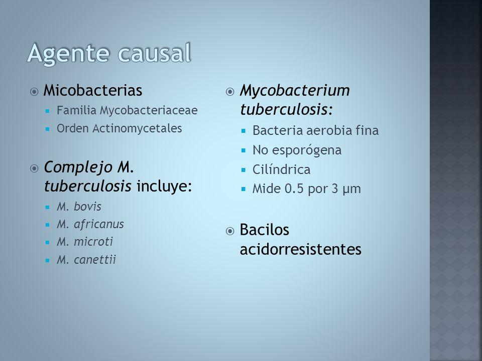 Agente causal Micobacterias Complejo M. tuberculosis incluye: