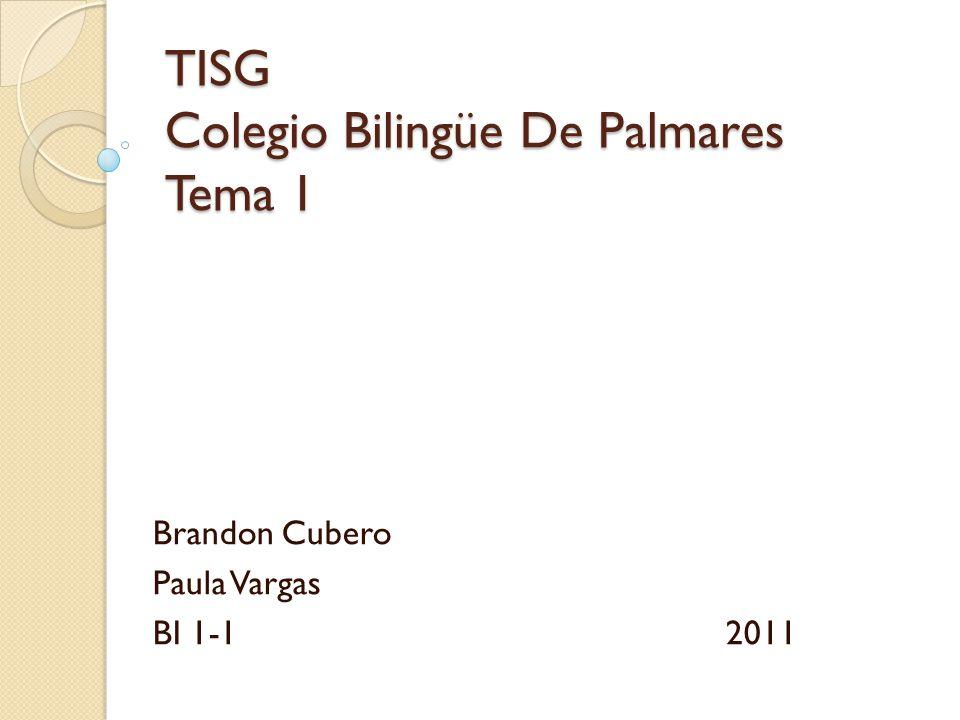 TISG Colegio Bilingüe De Palmares Tema 1