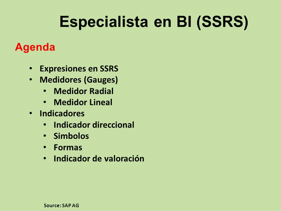 Especialista en BI (SSRS)