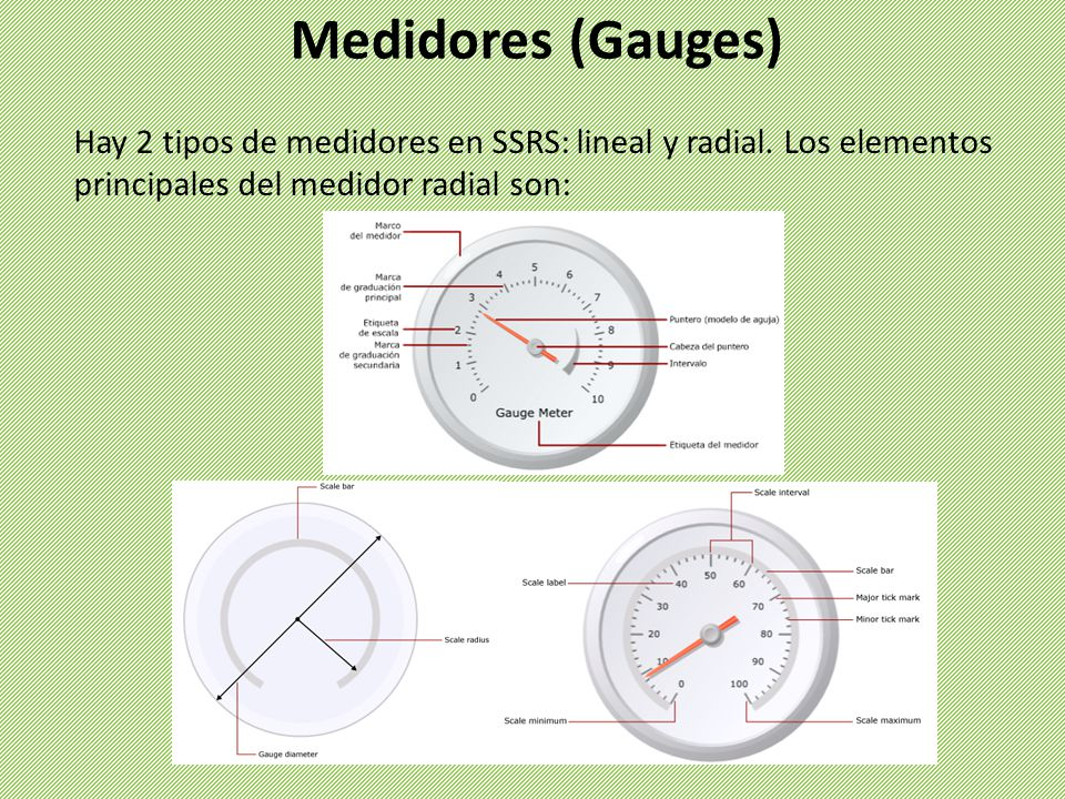 Medidores (Gauges) Hay 2 tipos de medidores en SSRS: lineal y radial.