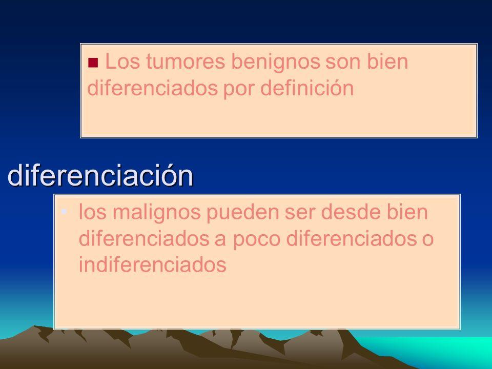 Los tumores benignos son bien diferenciados por definición