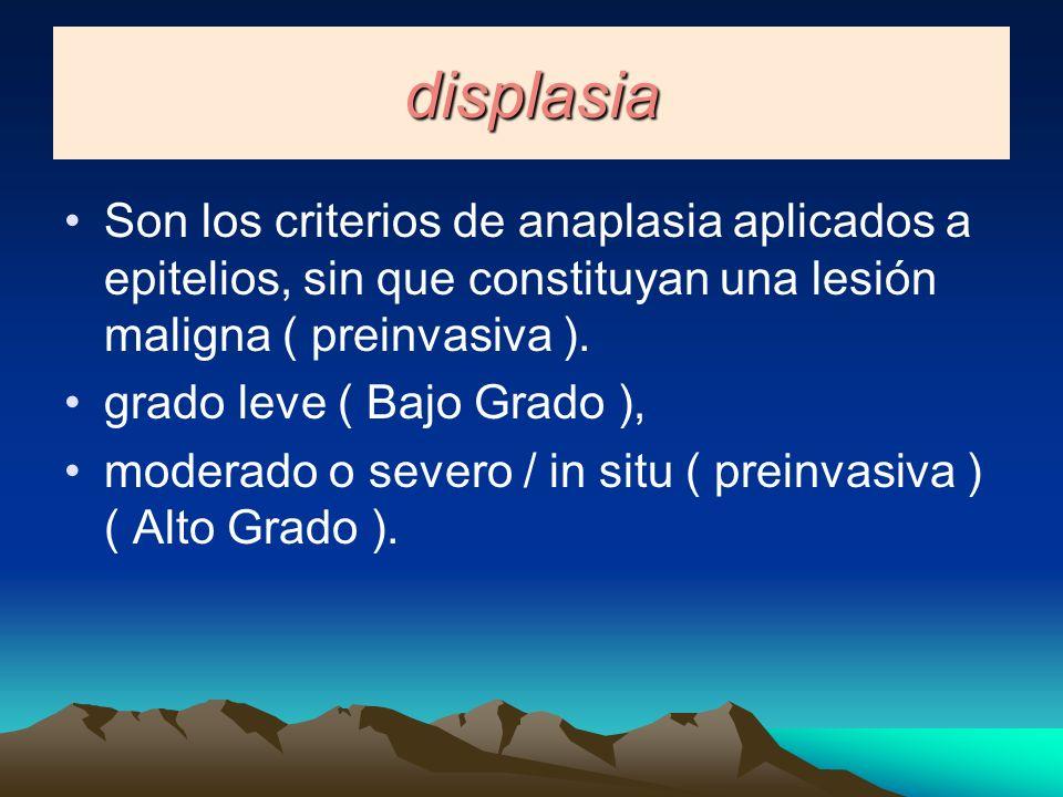displasia Son los criterios de anaplasia aplicados a epitelios, sin que constituyan una lesión maligna ( preinvasiva ).