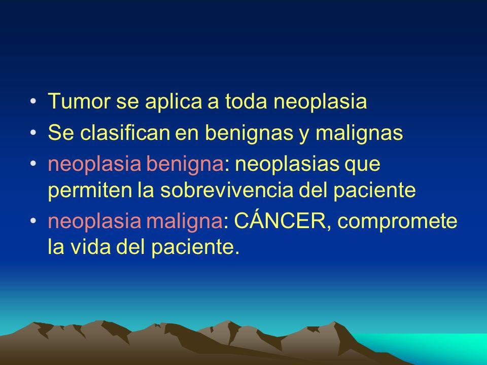 Tumor se aplica a toda neoplasia