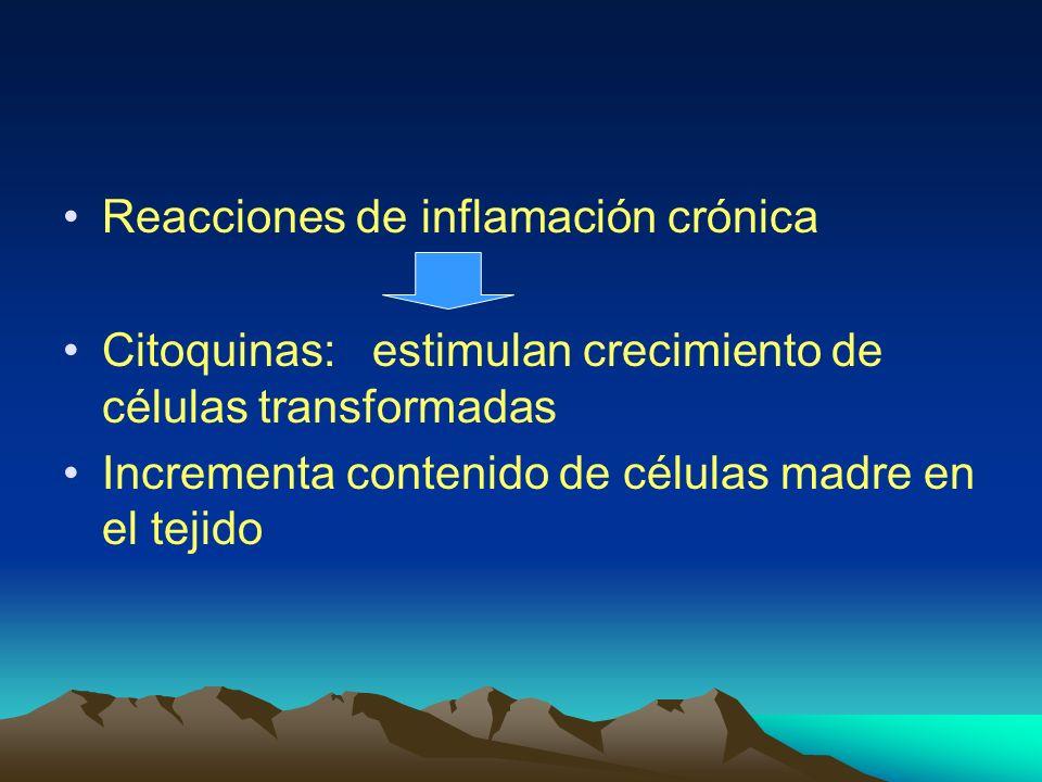 Reacciones de inflamación crónica
