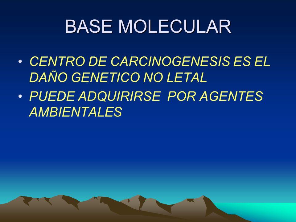 BASE MOLECULAR CENTRO DE CARCINOGENESIS ES EL DAÑO GENETICO NO LETAL