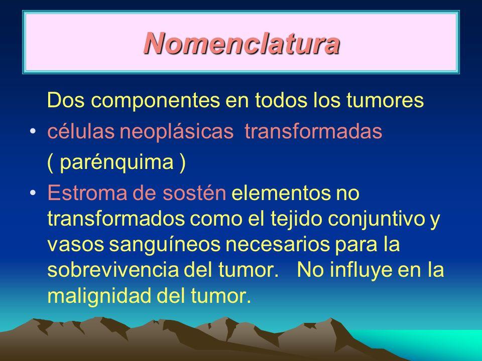 Nomenclatura Dos componentes en todos los tumores