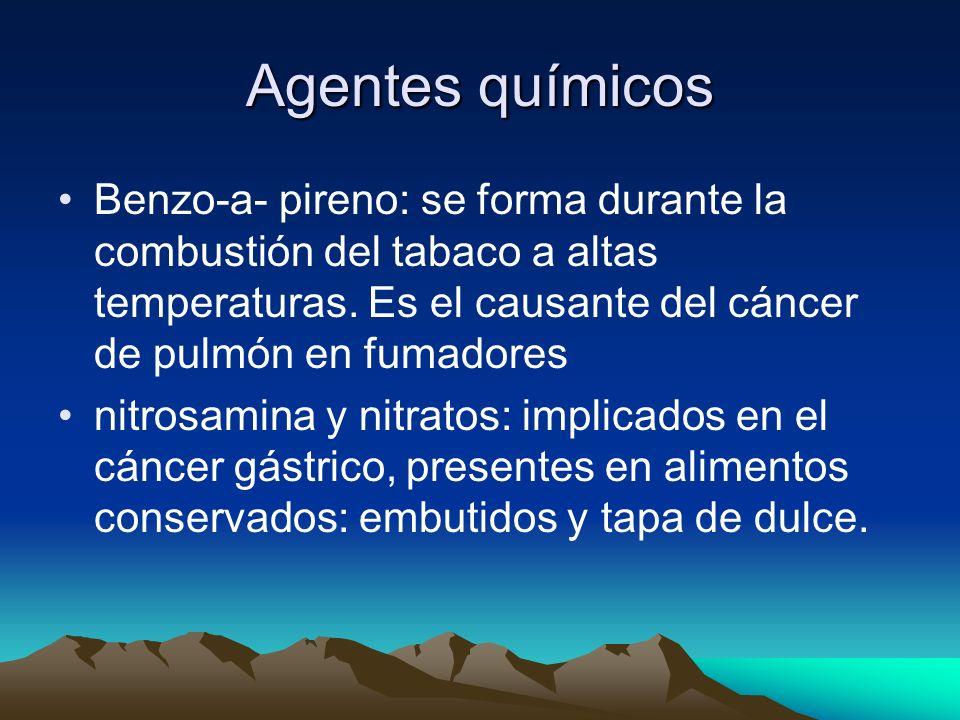 Agentes químicos Benzo-a- pireno: se forma durante la combustión del tabaco a altas temperaturas. Es el causante del cáncer de pulmón en fumadores.
