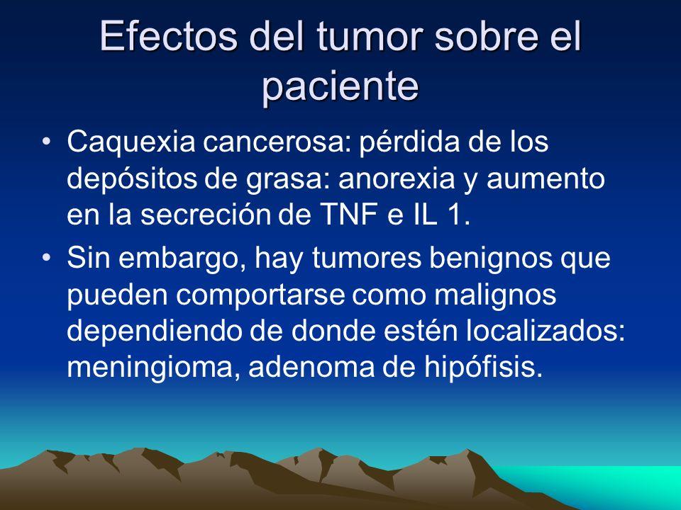 Efectos del tumor sobre el paciente
