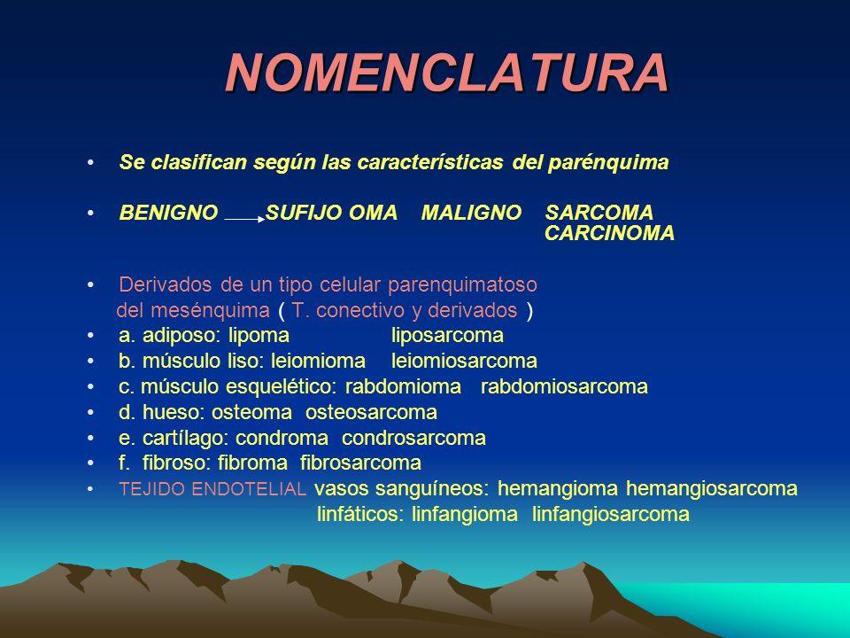 NOMENCLATURA Se clasifican según las características del parénquima