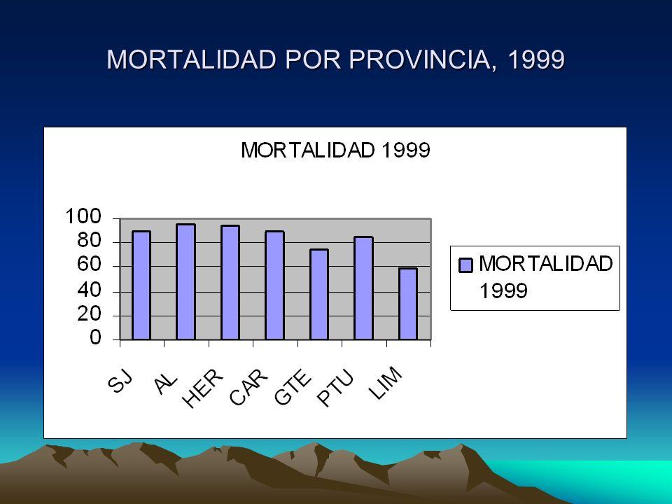MORTALIDAD POR PROVINCIA, 1999