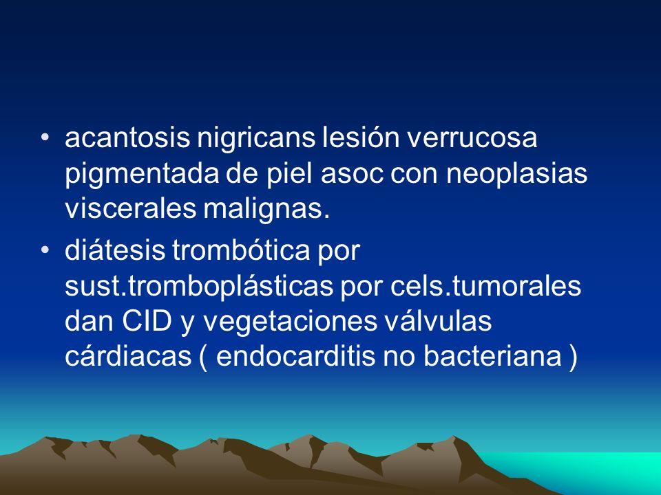 acantosis nigricans lesión verrucosa pigmentada de piel asoc con neoplasias viscerales malignas.