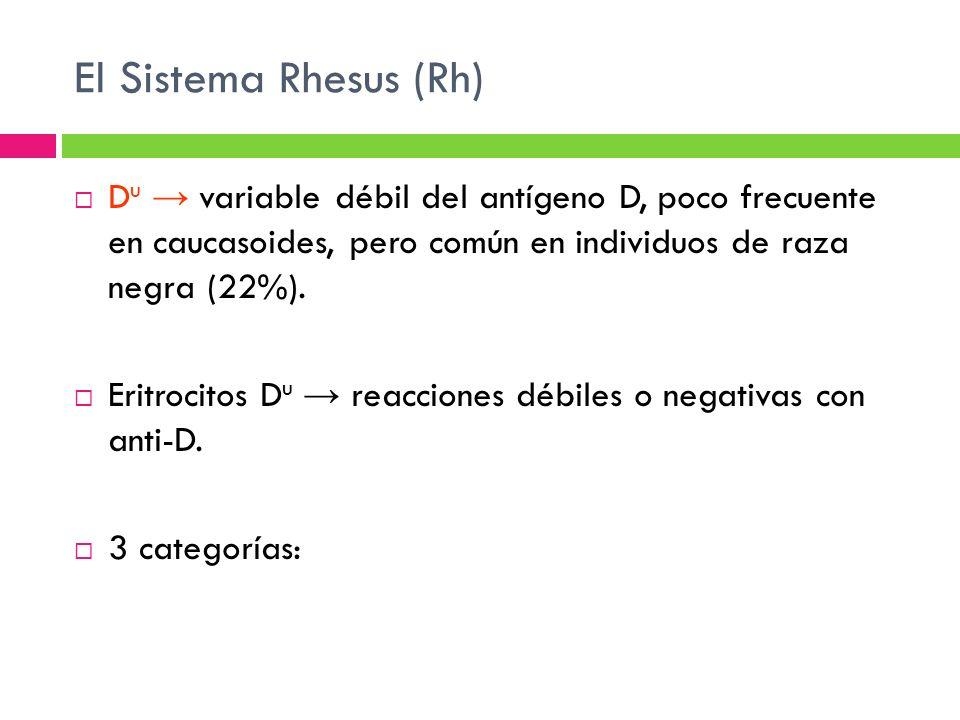 El Sistema Rhesus (Rh) Du → variable débil del antígeno D, poco frecuente en caucasoides, pero común en individuos de raza negra (22%).