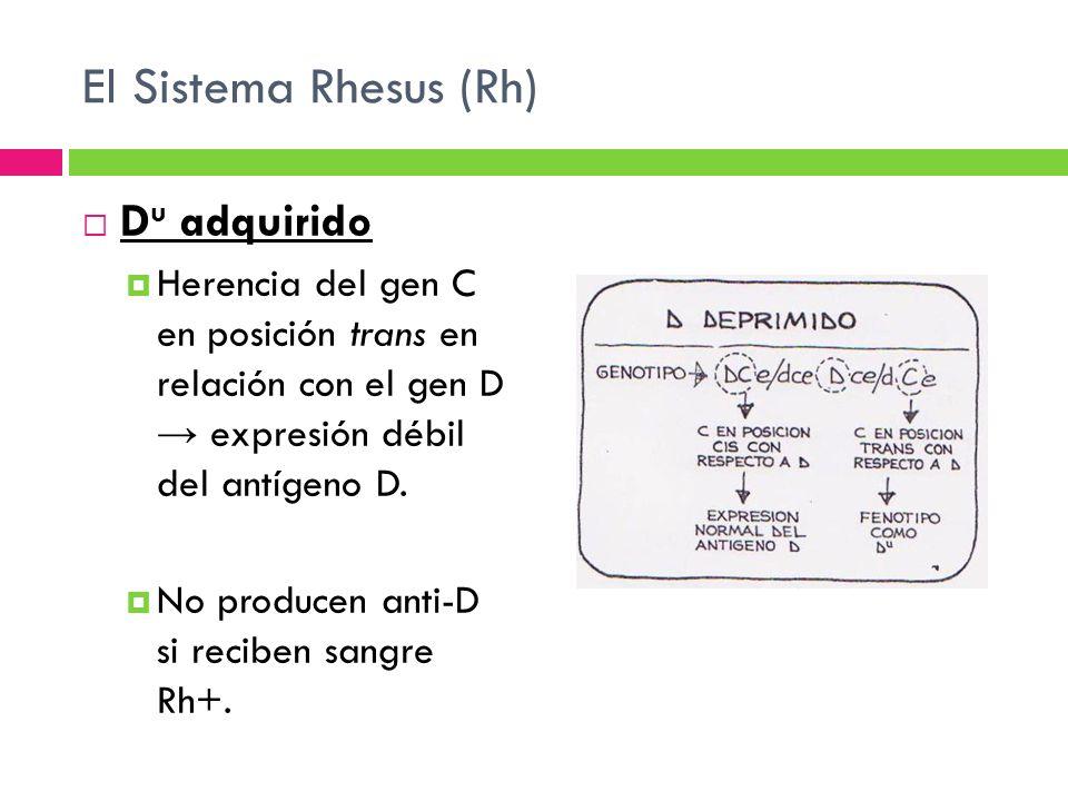 El Sistema Rhesus (Rh) Du adquirido
