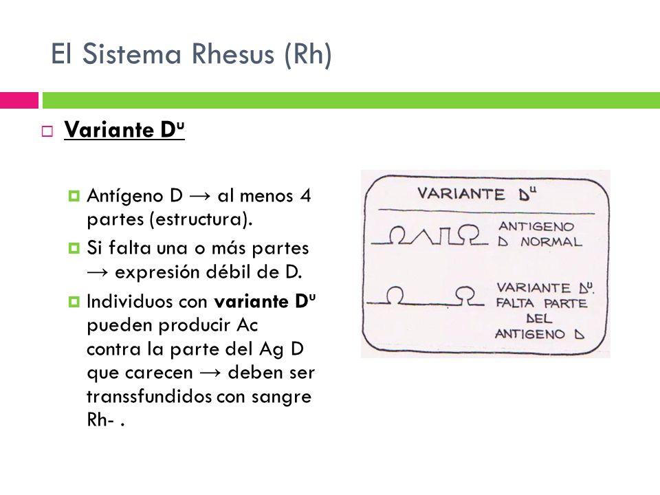 El Sistema Rhesus (Rh) Variante Du