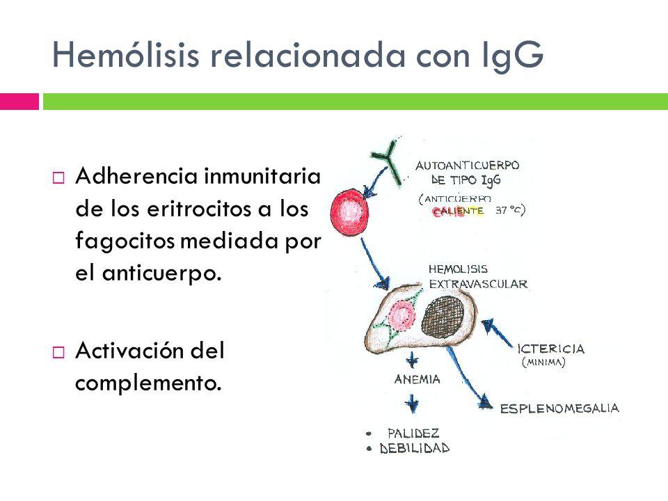 Hemólisis relacionada con IgG