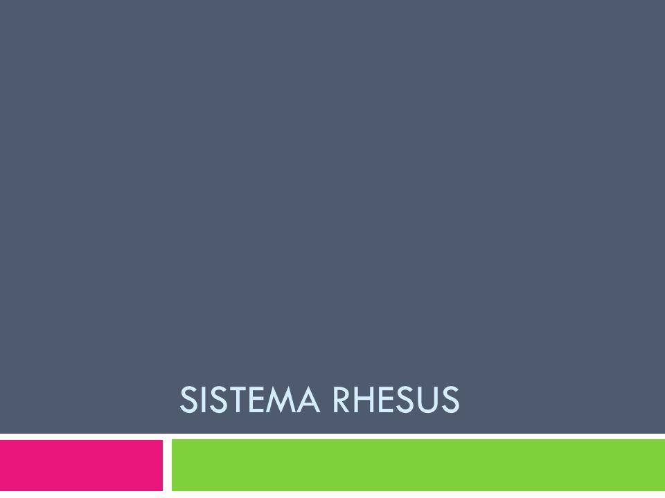 Sistema Rhesus
