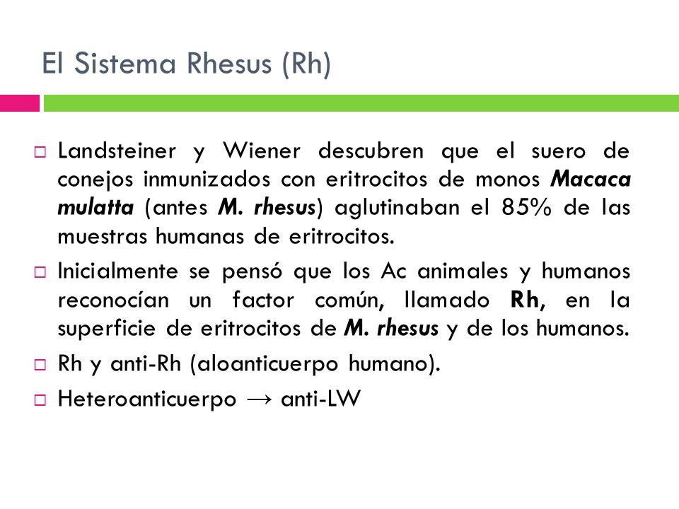 El Sistema Rhesus (Rh)
