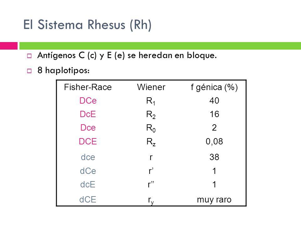 El Sistema Rhesus (Rh) Antígenos C (c) y E (e) se heredan en bloque.