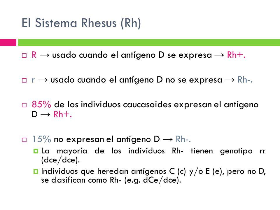 El Sistema Rhesus (Rh) R → usado cuando el antígeno D se expresa → Rh+. r → usado cuando el antígeno D no se expresa → Rh-.