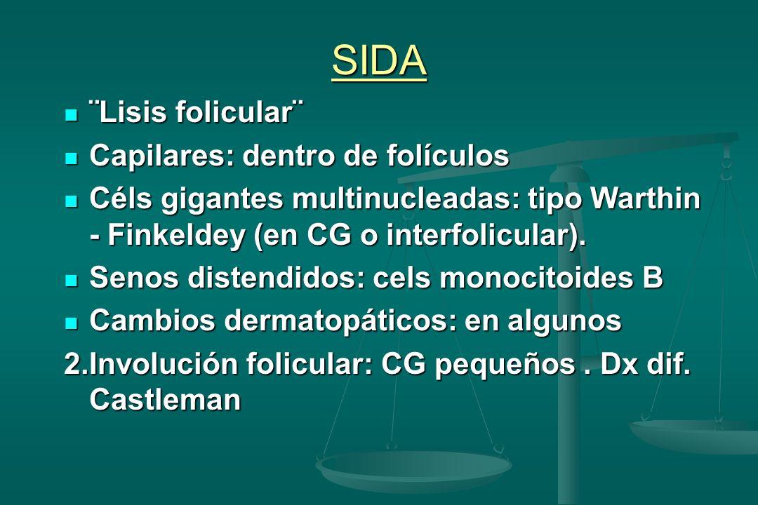SIDA ¨Lisis folicular¨ Capilares: dentro de folículos