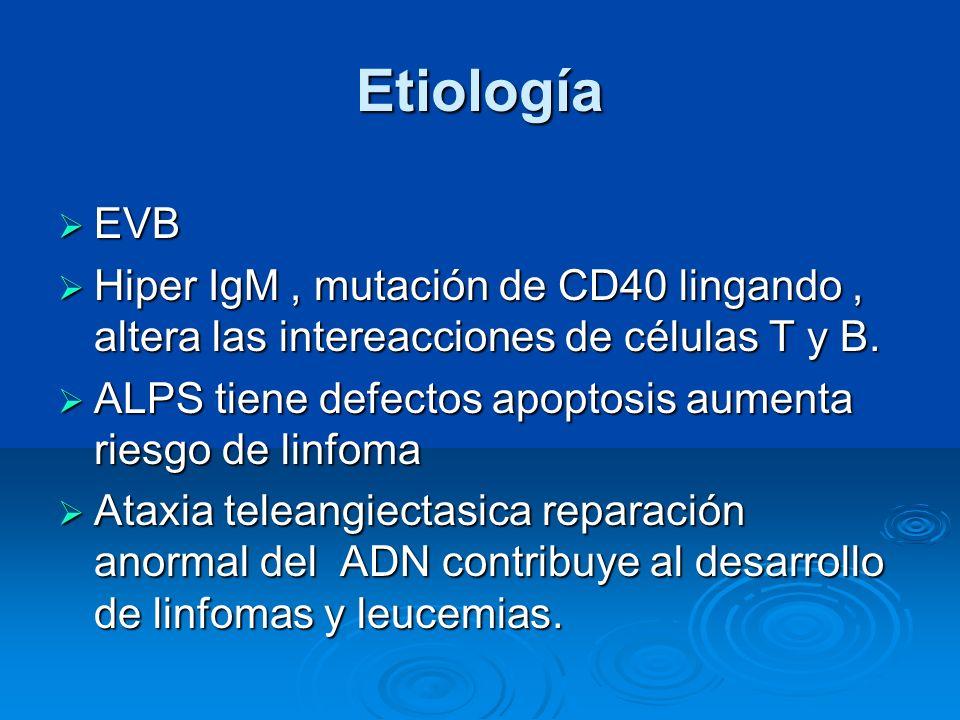 Etiología EVB. Hiper IgM , mutación de CD40 lingando , altera las intereacciones de células T y B.
