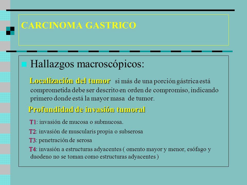 Hallazgos macroscópicos: