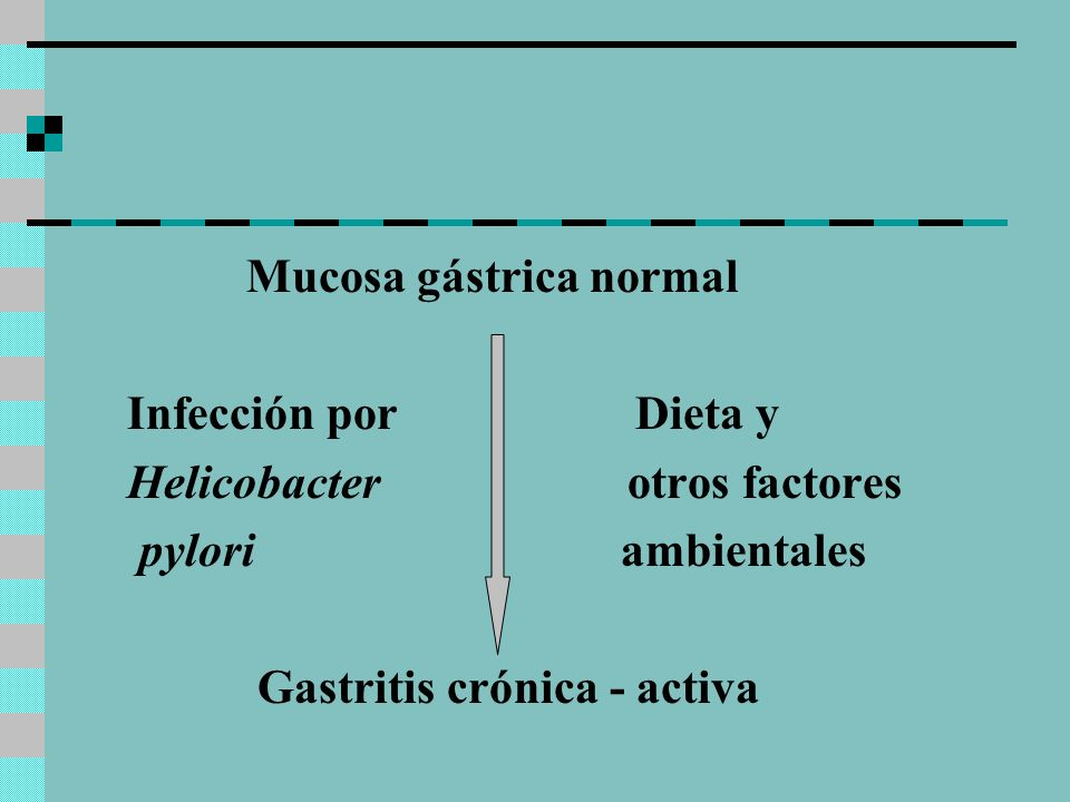 Mucosa gástrica normal